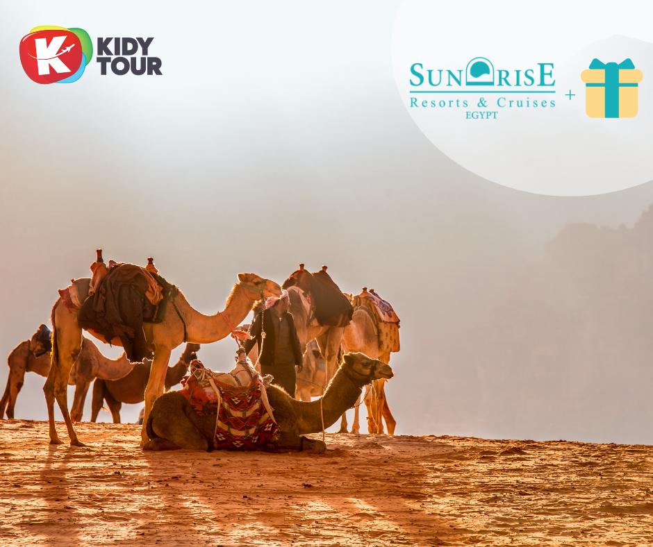 5425f019511 Tasuta Hurghada linnaekskursioon Sunrise hotellide fännidele ...